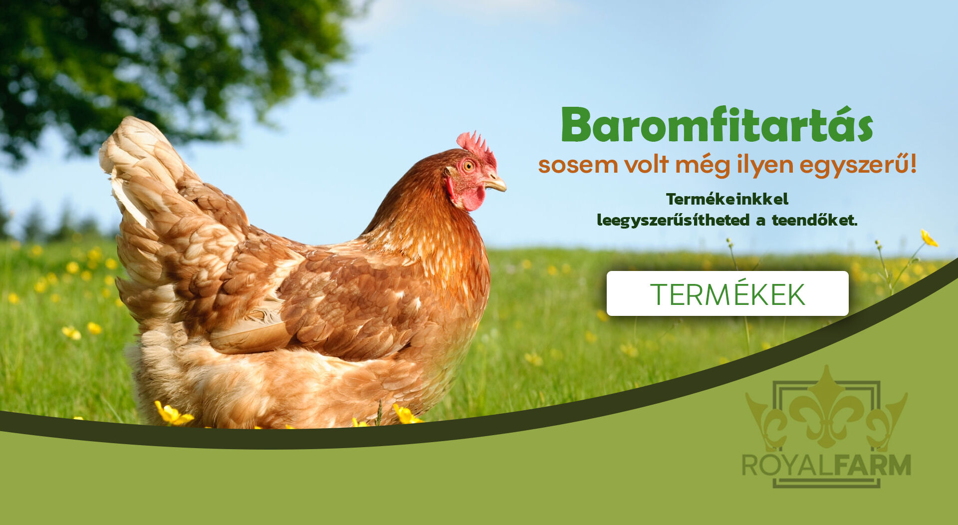 Baromfi