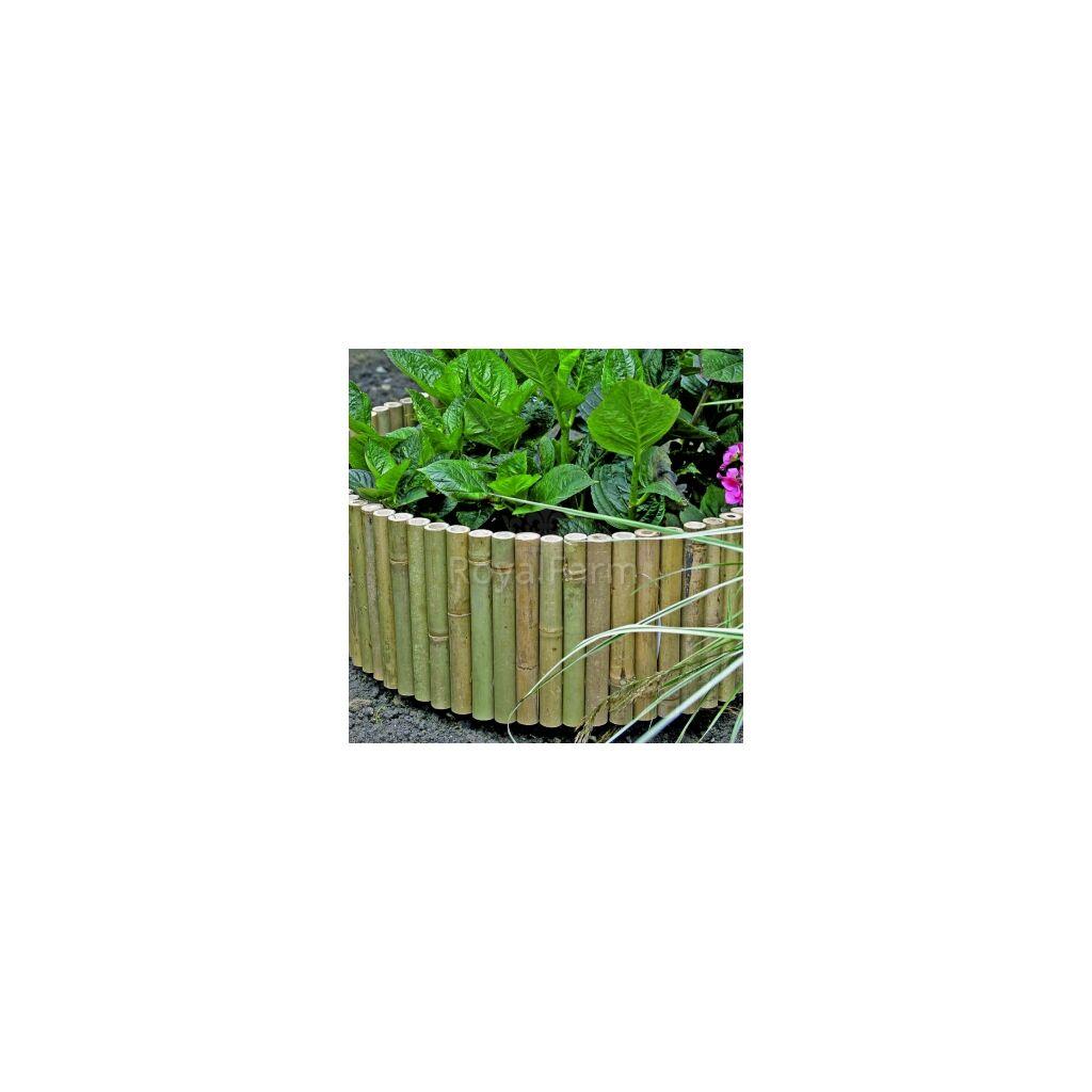 BAMBOO BORDER bambusz szegély