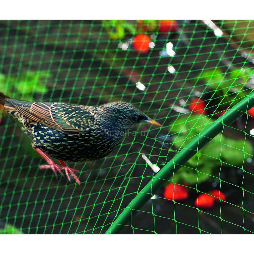 BIRDNET HDPE extrudált madárháló, rombusz szemformájú 4x50