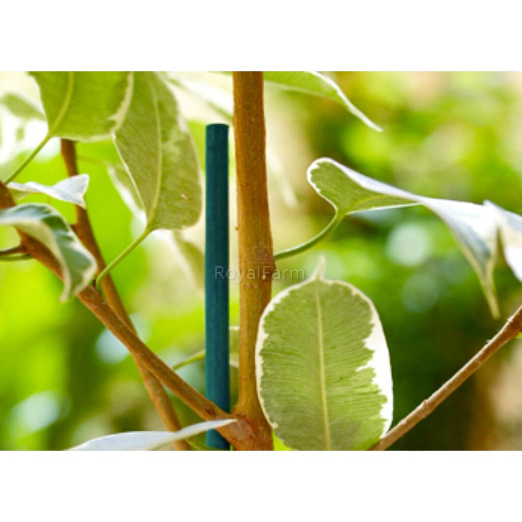 SPLIT BAMBOO festett bambusz pálcák
