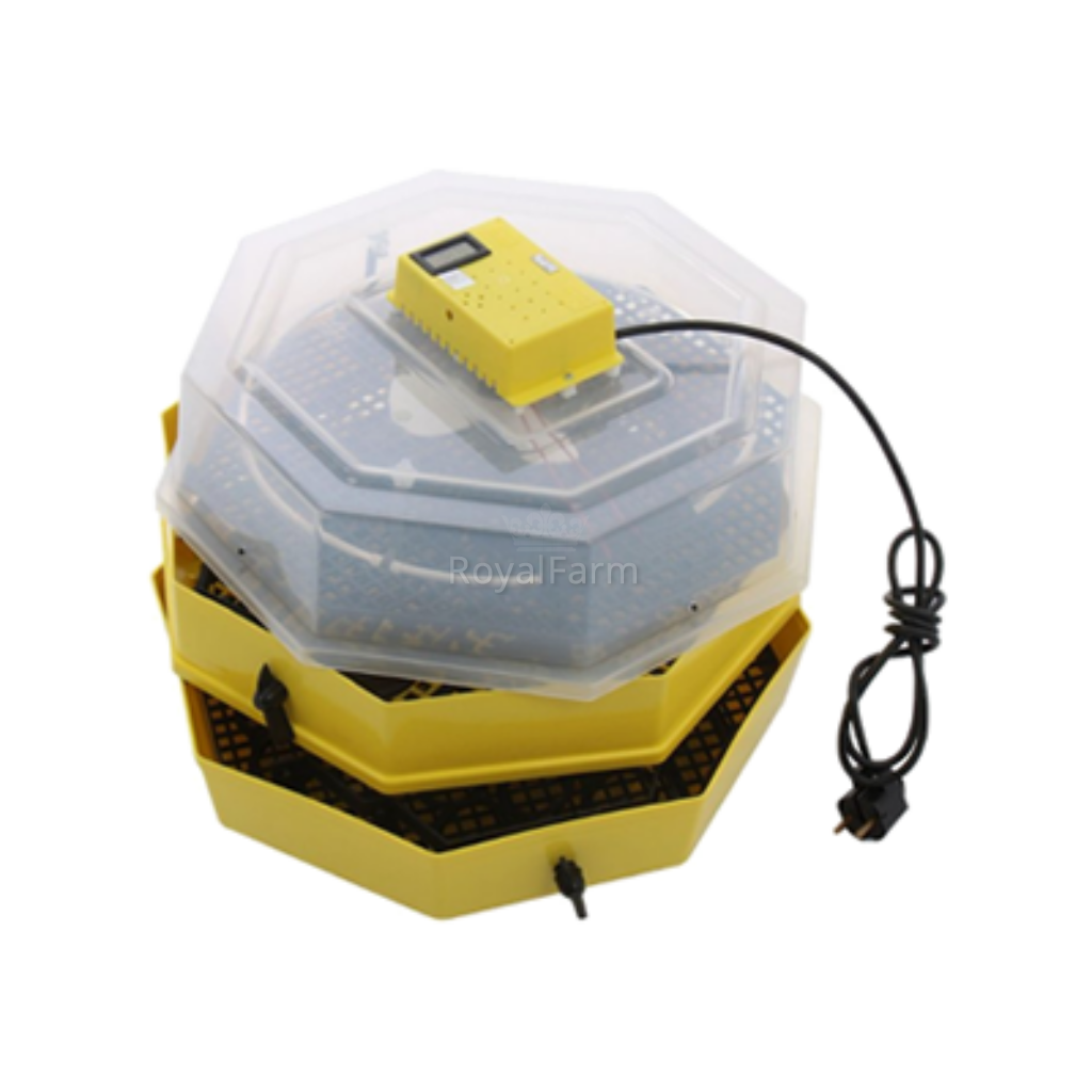 Cleo 2x5T dupla nyolcszögletű keltetőgép