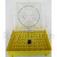 IO-1PTEHF négyszögletű keltetőgép