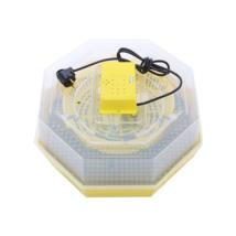 Cleo 5 nyolcszögletű keltetőgép
