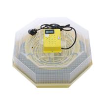 Cleo 5T nyolcszögletű keltetőgép