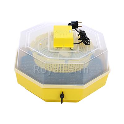 Cleo 5D nyolcszögletű keltetőgép