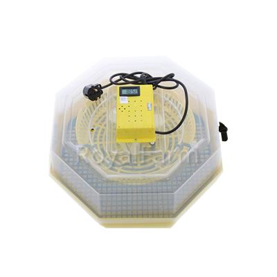 Cleo 5DT nyolcszögletű keltetőgép